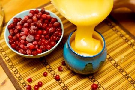 Чем полезна клюква с медом