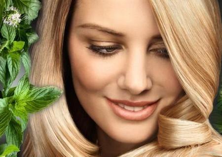 Мята для красоты волос