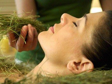 Травы для кожи лица