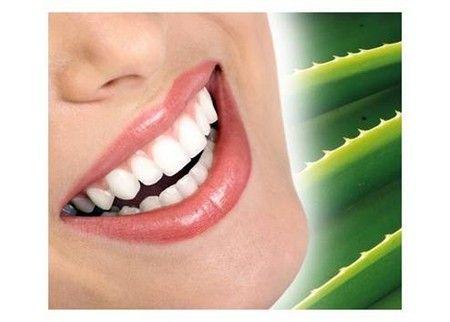 Растение полезно для полости рта