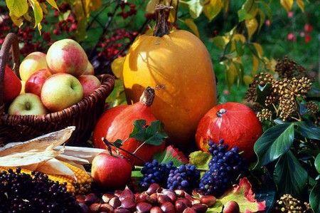 Плоды из собственного огорода