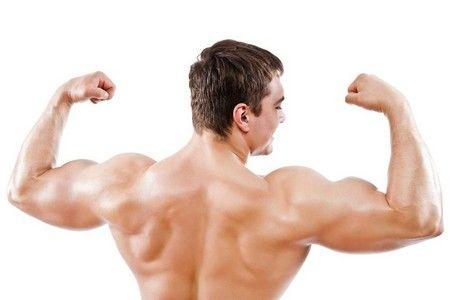 Сильные мышцы