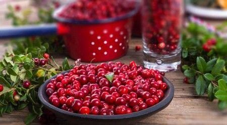 Традиционная ягода