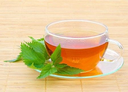 Чай из крапивы