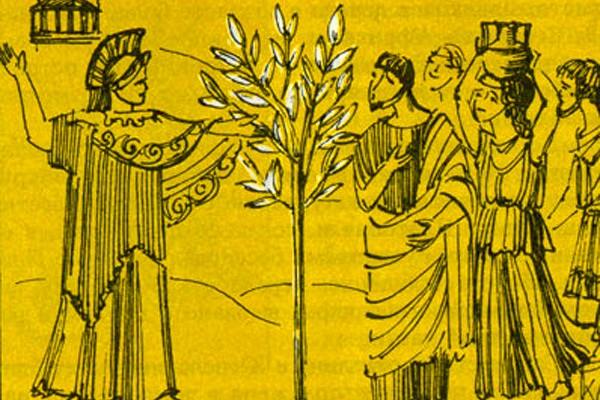 Растение, известное с древних времен