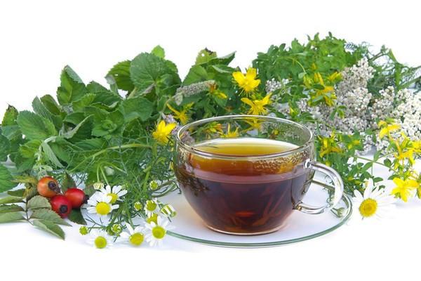 Чай из зверобоя для крепкого здоровья