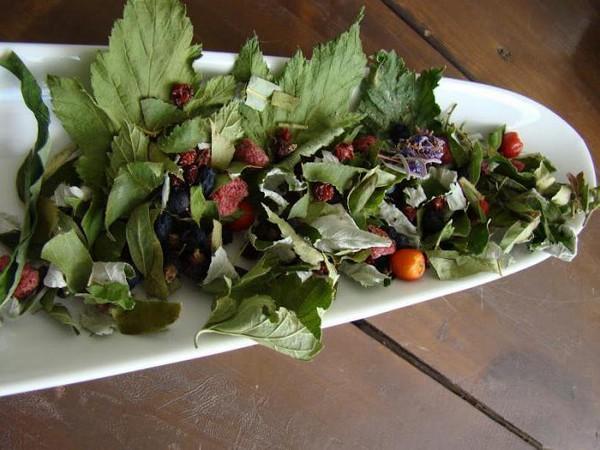 Сушеные листья для чая