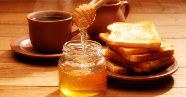 Мед в терапии желудка
