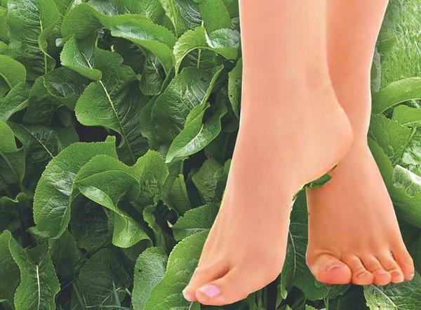 Хрен для здоровья ног