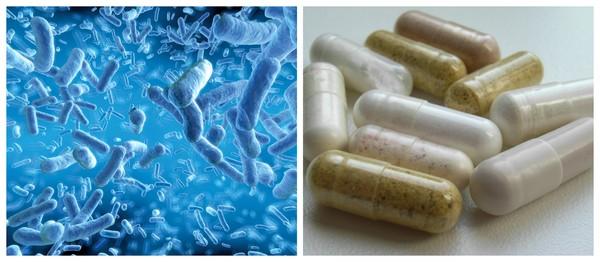 Сорбированные пробиотики