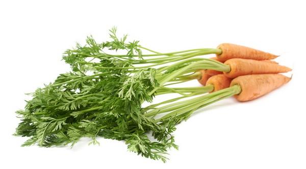 В моркови полезны и вершки, и корешки