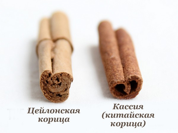Различия во внешнем виде специй
