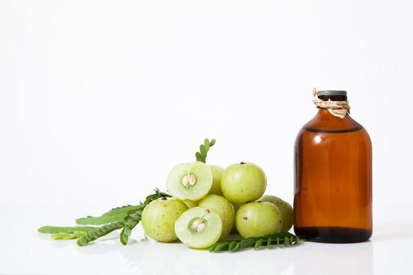 Масло плодов амлы