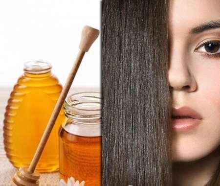 Мед для красоты волос
