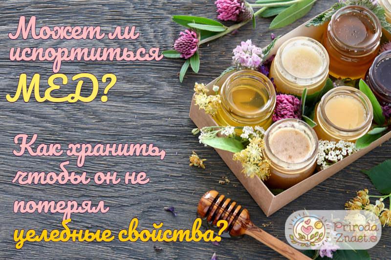 Может ли мед испортиться?