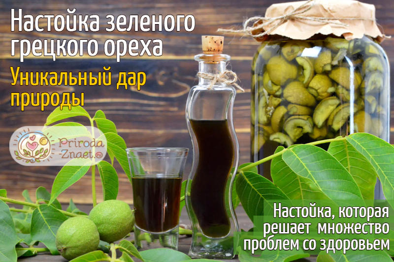Настойка на зеленом грецком орехе