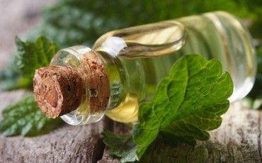 Эфирное масло месиссы