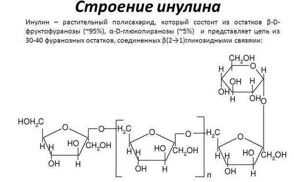 Инулин - растительный полисахарид
