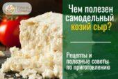 Козий домашний сыр