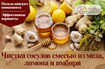 Имбирь, лимон, мед и чеснок для чистки сосудов