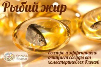 Рыбий жир и холестерин
