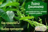 «Разрушитель сахара» - вечнозеленая джимнема