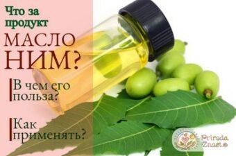 Плоды дерева маргоза и масло ним