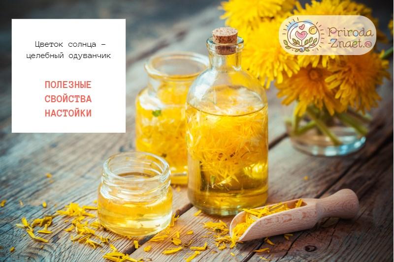 Цветок солнца – целебный одуванчик