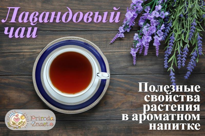Чай с лавандой вкусен и полезен