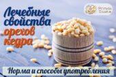 Кедровые орехи – вкусный продукт, полезный для здоровья