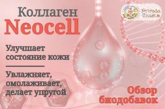 Коллаген Neocell