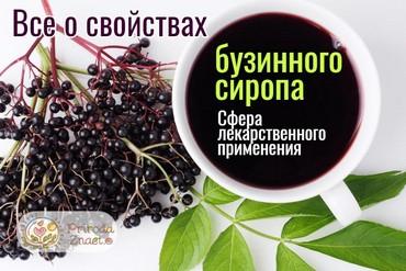 Лечебный сироп бузины