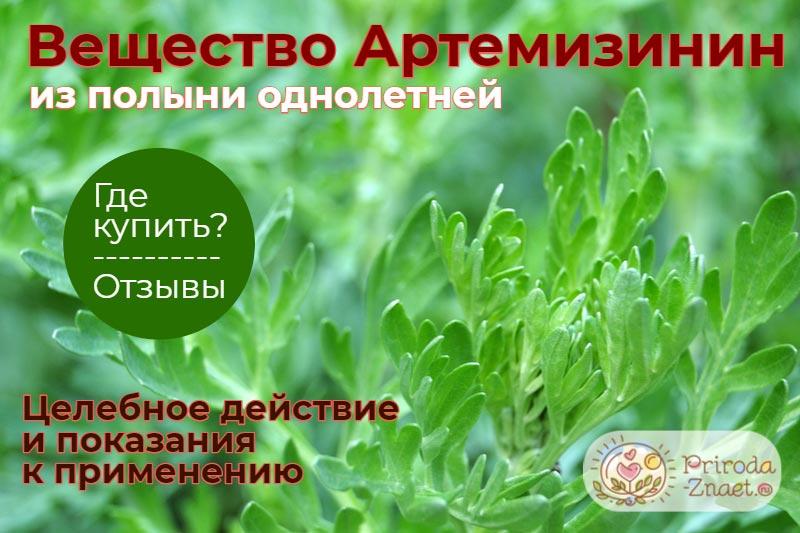 Артемизинин из полыни