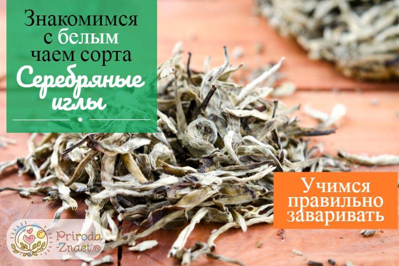 Чай «Серебряные иглы»