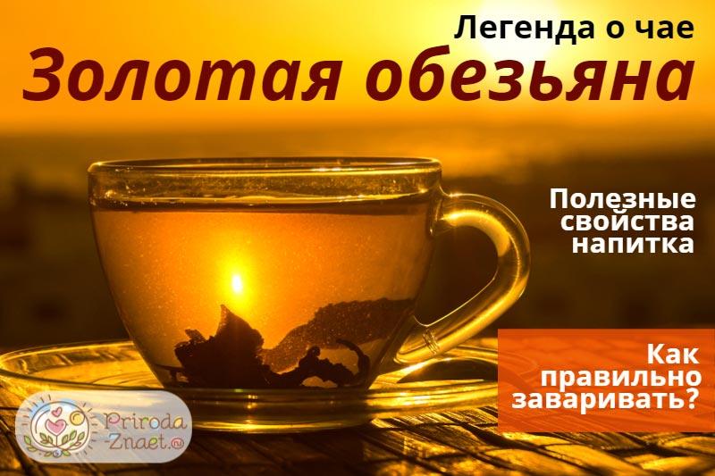 Чай «Золотая обезьяна»