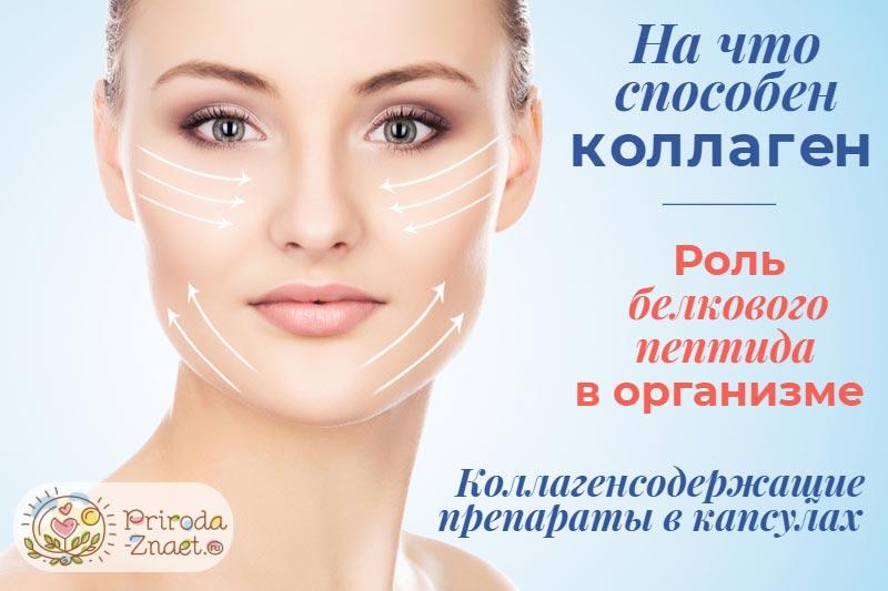 Коллаген — это основной белок нашей кожи