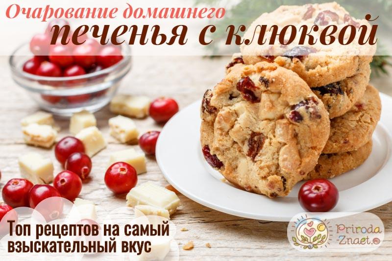Печенье с клюквой