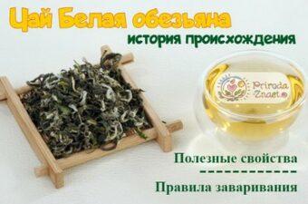 Чай «Белая обезьяна»