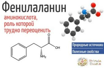Формула фенилаланина