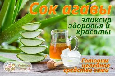 Сок агавы