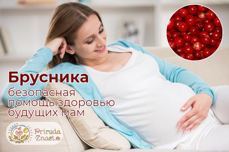 Брусника при беременности