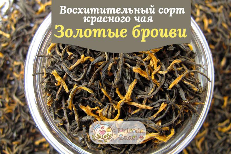 Чай «Золотые брови»
